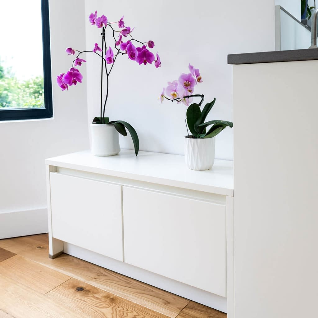Orchids on a low handleless drawer unit